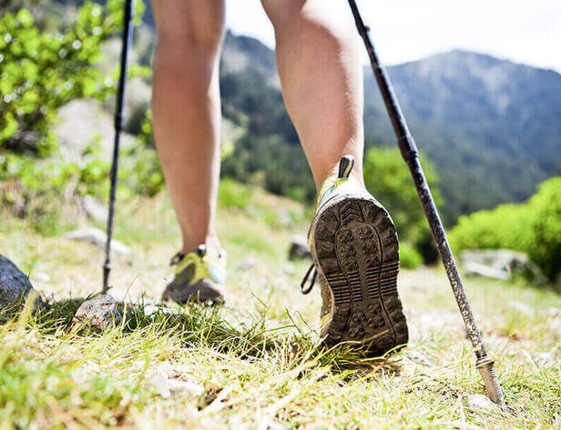 Nordic walking <br/>in Krasnaya Polyana